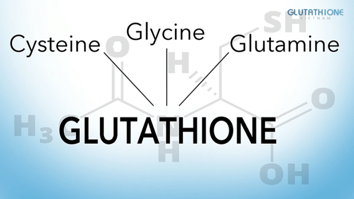 Glutathione Là Gì? Tác Dụng Của Glutathione Với Sức Khỏe