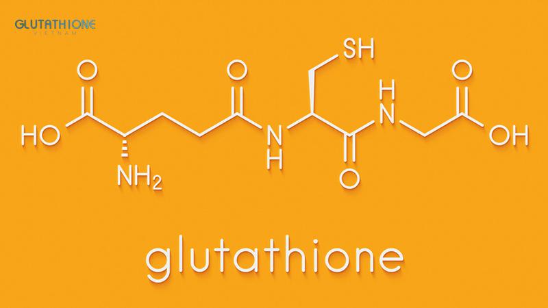 Glutathione ức chế quá trình hình thành và sản sinh Melanin