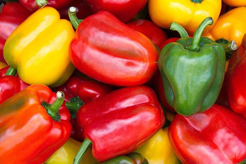 ớt chuông là một nguồn cung cấp beta carotene tuyệt vời để cơ thể chuyển hóa thành vitamin A.