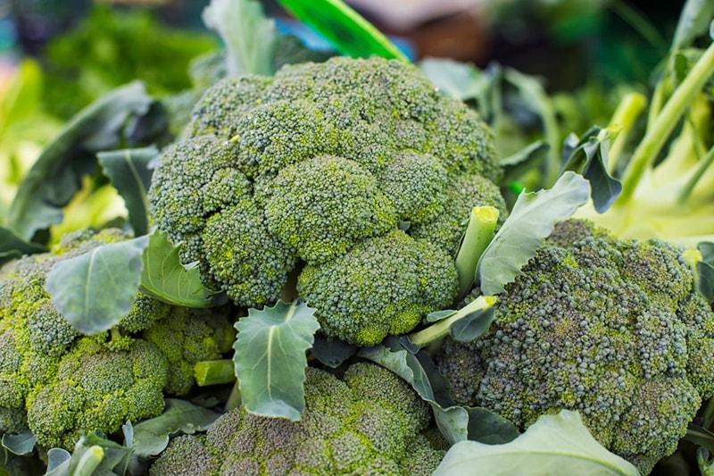 Bông cải xanh chứa nhiều vitamin và khoáng chất quan trọng đối với sức khỏe làn da