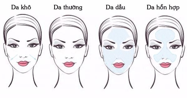 Các loại da mặt thường gặp là da thường, da nhờn, da khô và da hỗn hợp