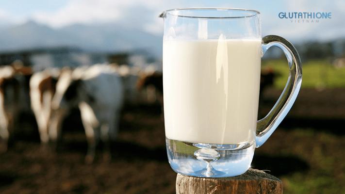 Cách chăm sóc da bằng sữa tươi hiệu quả